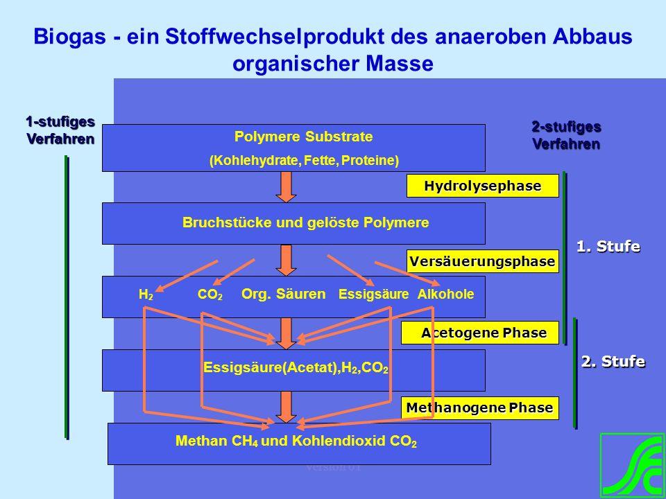 Version 01 Polymere Substrate (Kohlehydrate, Fette, Proteine) Bruchstücke und gelöste Polymere H 2 CO 2 Org. Säuren Essigsäure Alkohole Essigsäure(Ace