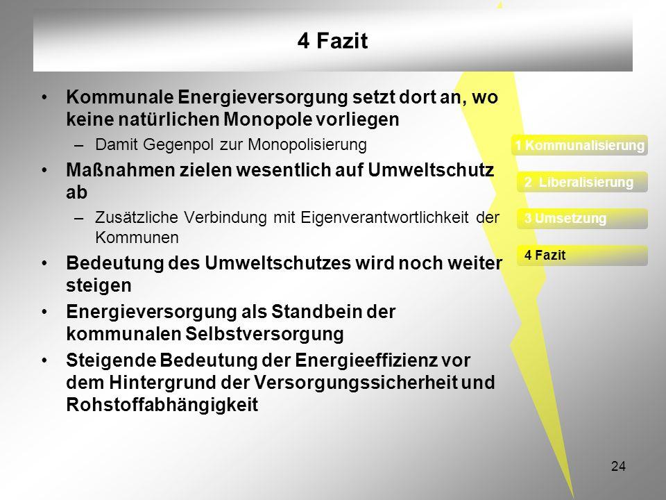 24 4 Fazit Kommunale Energieversorgung setzt dort an, wo keine natürlichen Monopole vorliegen –Damit Gegenpol zur Monopolisierung Maßnahmen zielen wes