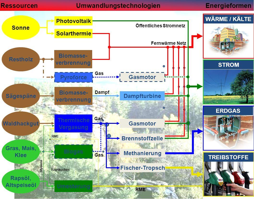Sonne Restholz Sägespäne RessourcenUmwandlungstechnologienEnergieformen Gras, Mais, Klee Rapsöl, Altspeiseöl Photovoltaik Solarthermie ERDGAS Biomasse- verbrennung Biomasse- verbrennung Thermische Vergasung Fernwärme Netz Umesterung Rapskuchen Dampf Dampfturbine Gasmotor Brennstoffzelle Methanierung Fischer-Tropsch Biogas Gas Öffentliches Stromnetz STROM TREIBSTOFFE WÄRME / KÄLTE Waldhackgut Pyroforce Gasmotor Gas RME Glycerin RME Gas