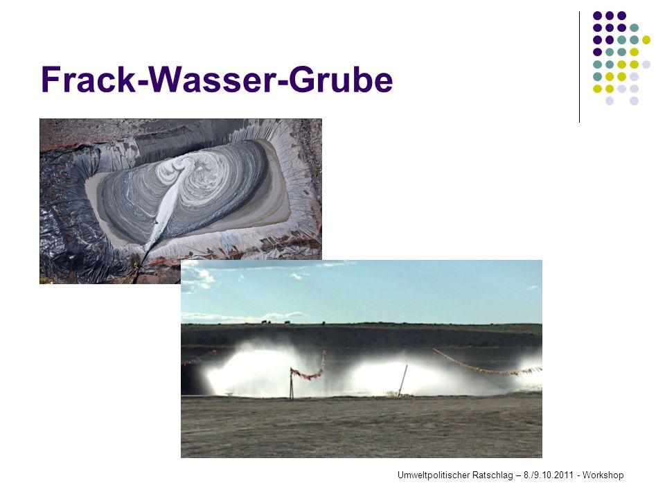 Frack-Wasser-Grube Umweltpolitischer Ratschlag – 8./9.10.2011 - Workshop