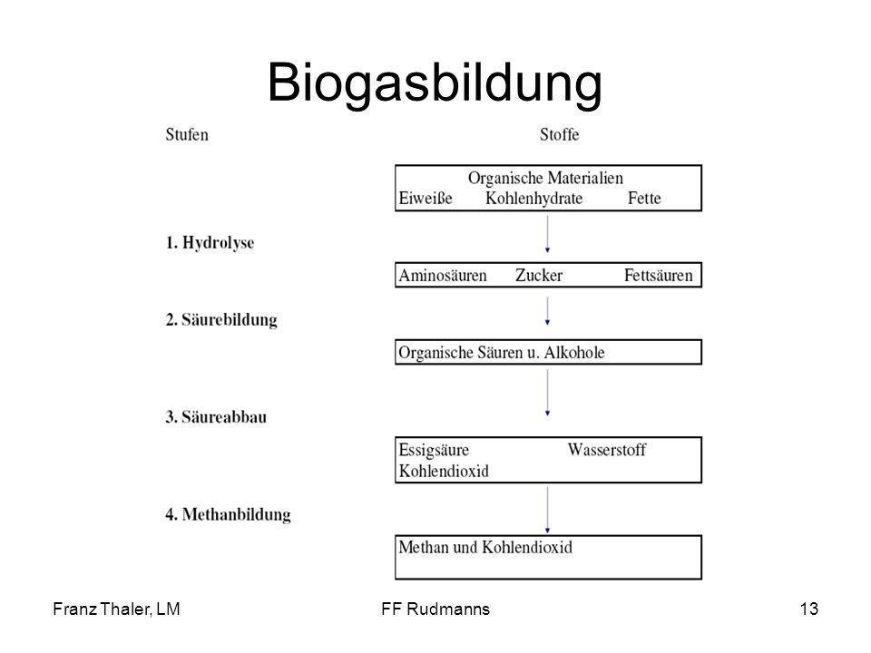 Franz Thaler, LMFF Rudmanns13 Biogasbildung