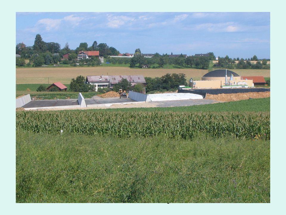 Biomasse: Mais (Kohlenhydrate), Roggen (Eiweiß), Sonnenblumen/Sudangras (Fette) Hydrolyse- phase Bakterien setzten Enzyme frei, die das Material auf biochemische Weise zersetzen (hydrolisiert) Einfache Organische Verbindungen (wie Aminosäuren, Zucker, Fettsäuren) Versäuerungs- phase (Acidogenese) säurebildende Bakterien niedere Fettsäuren (Essig-, Propion- und Buttersäure) Milchsäure CO 2 +H 2 Essigsäure- bildung (Acetogenese) Alkohole Bakterien H 2, CO 2 und Essigsäuren Methano- genese CH 4 + CO 2 + H 2 O Methan- bakterien (anaerob) enge Lebensgemein- schaft CH 3 COOH CH 4 + CO 2 Biogas: CO 2 + 4 H 2 CH 4 + 2 H 2 O