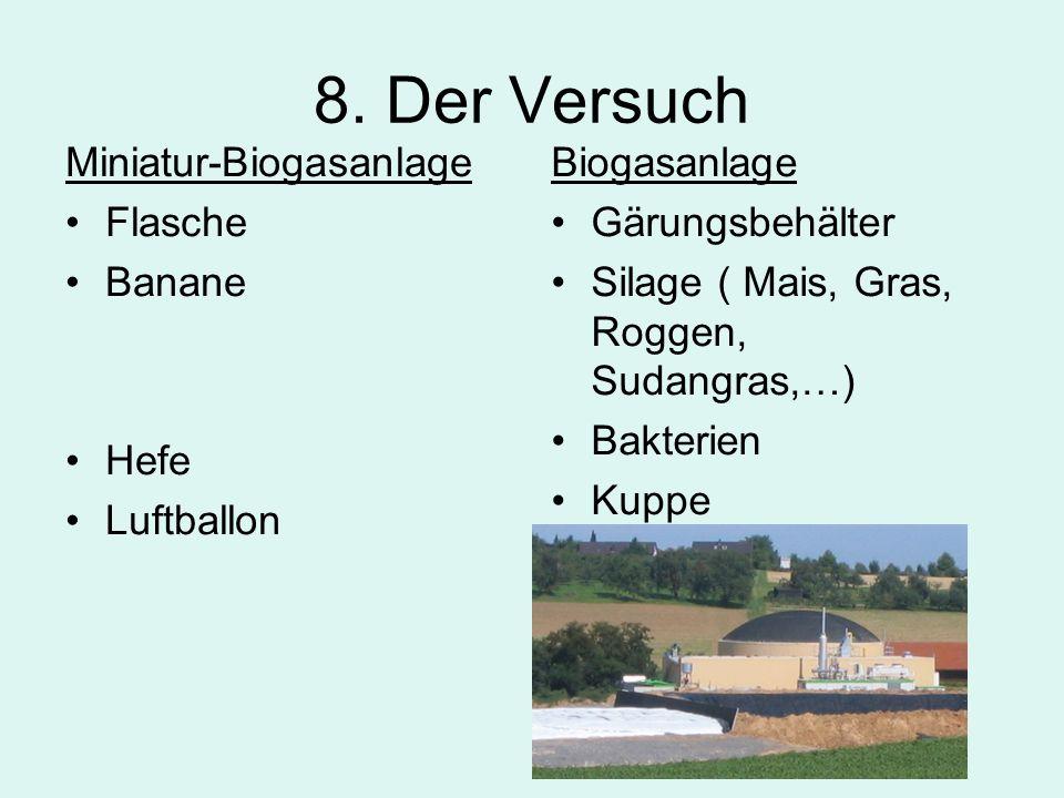 8. Der Versuch Miniatur-Biogasanlage Flasche Banane Hefe Luftballon Biogasanlage Gärungsbehälter Silage ( Mais, Gras, Roggen, Sudangras,…) Bakterien K