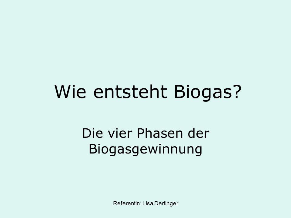 Referentin: Lisa Dertinger Wie entsteht Biogas? Die vier Phasen der Biogasgewinnung