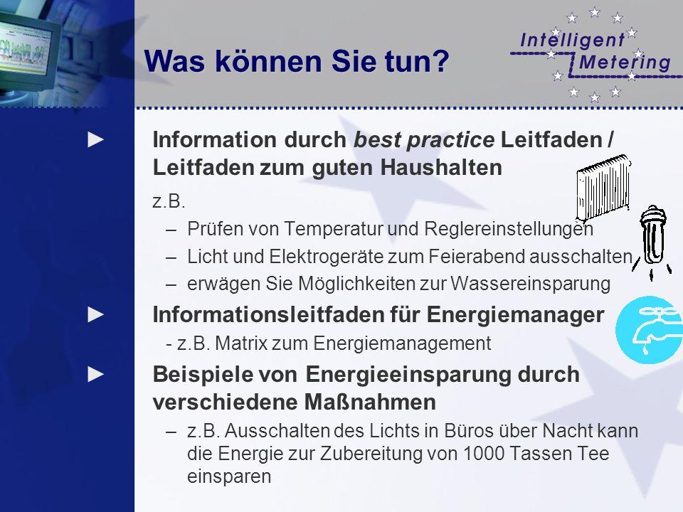 Was können Sie tun? Information durch best practice Leitfaden / Leitfaden zum guten Haushalten z.B. –Prüfen von Temperatur und Reglereinstellungen –Li