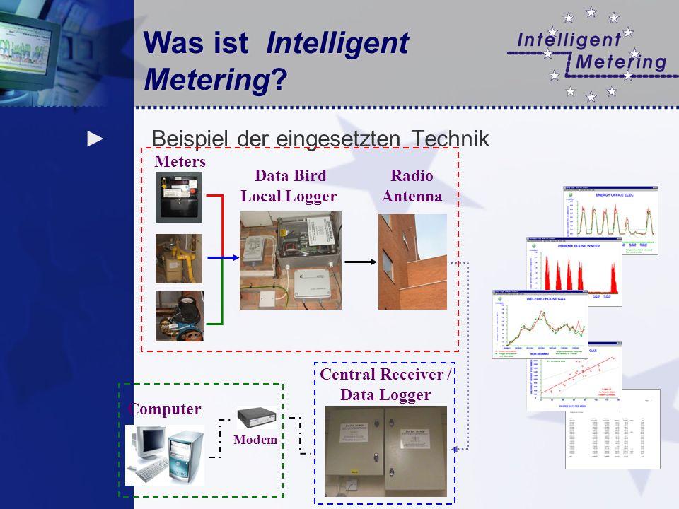 Was ist Intelligent Metering? Beispiel der eingesetzten Technik Radio Antenna Meters Data Bird Local Logger Central Receiver / Data Logger Computer Mo