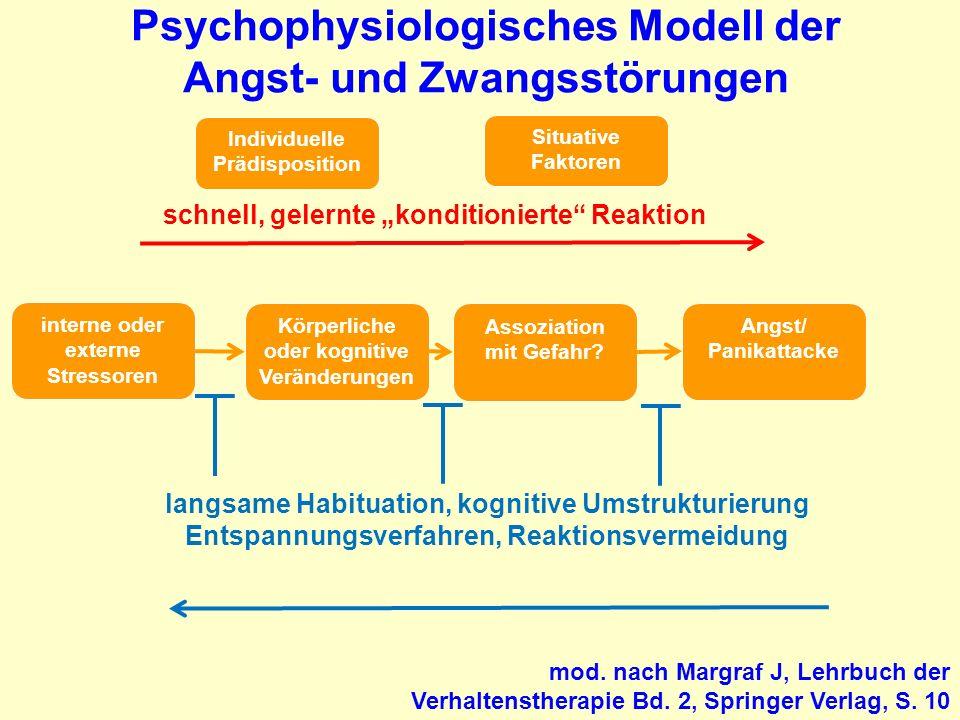 Psychophysiologisches Modell der Angst- und Zwangsstörungen interne oder externe Stressoren Körperliche oder kognitive Veränderungen Assoziation mit G