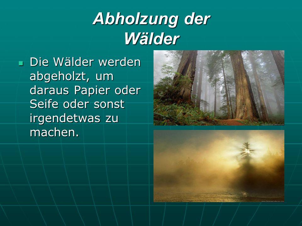 Abholzung der Wälder Die Wälder werden abgeholzt, um daraus Papier oder Seife oder sonst irgendetwas zu machen. Die Wälder werden abgeholzt, um daraus