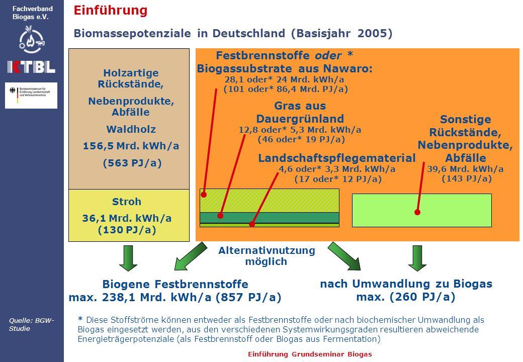 Einführung Grundseminar Biogas Fachverband Biogas e.V. Holzartige Rückstände, Nebenprodukte, Abfälle Waldholz 156,5 Mrd. kWh/a (563 PJ/a) * Diese Stof