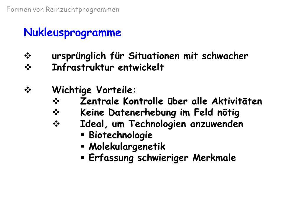 Nukleuszuchtprogramm n. Hinks (1978)