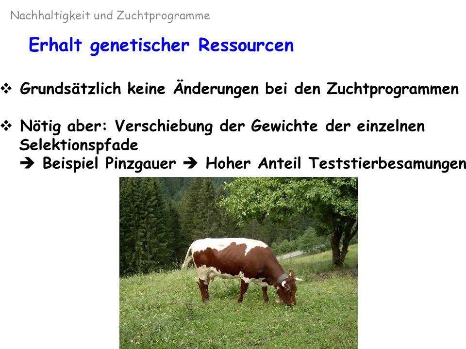 Nachhaltigkeit und Zuchtprogramme Inzucht Inzuchtentwicklung international (Holstein) (Miglior, 2000)