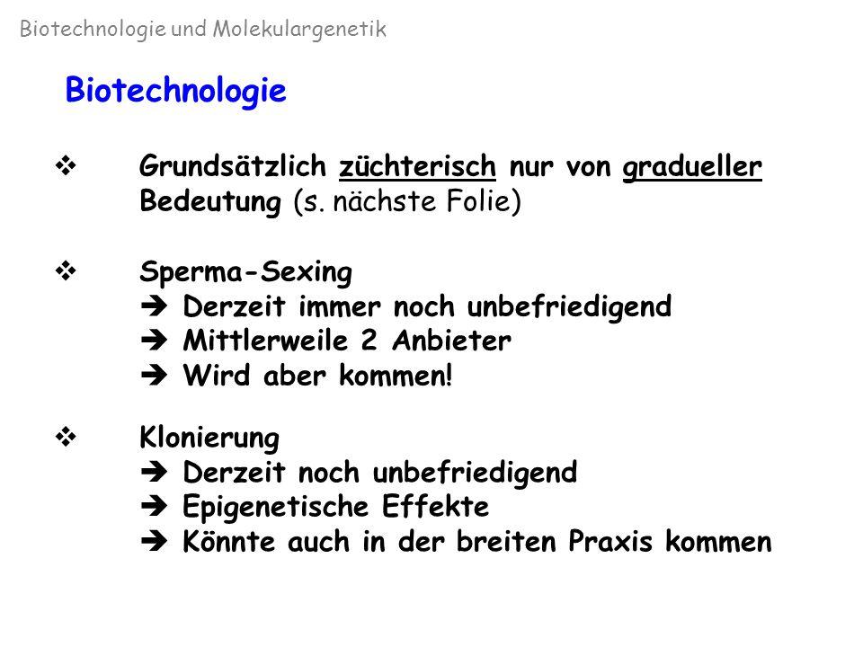 Genetischer Fortschritt bei Einsatz von Biotechnologie (Van Vleck, 1981) Biotechnologie und Molekulargenetik