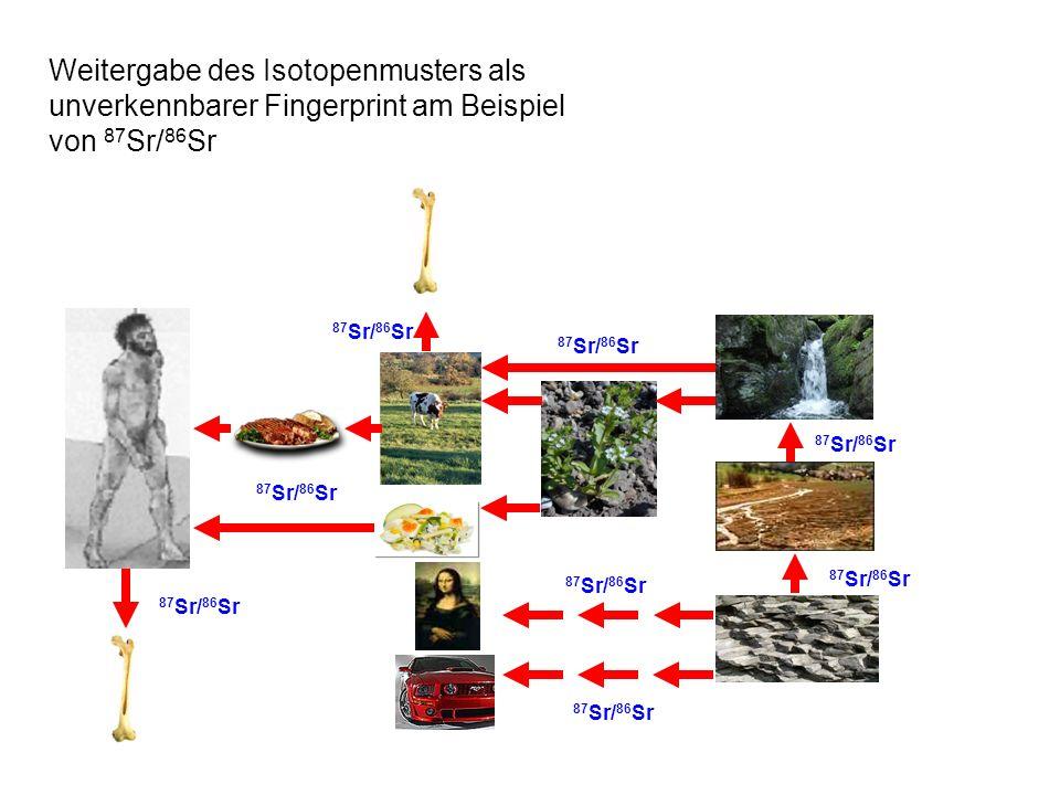 Weitergabe des Isotopenmusters als unverkennbarer Fingerprint am Beispiel von 87 Sr/ 86 Sr 87 Sr/ 86 Sr