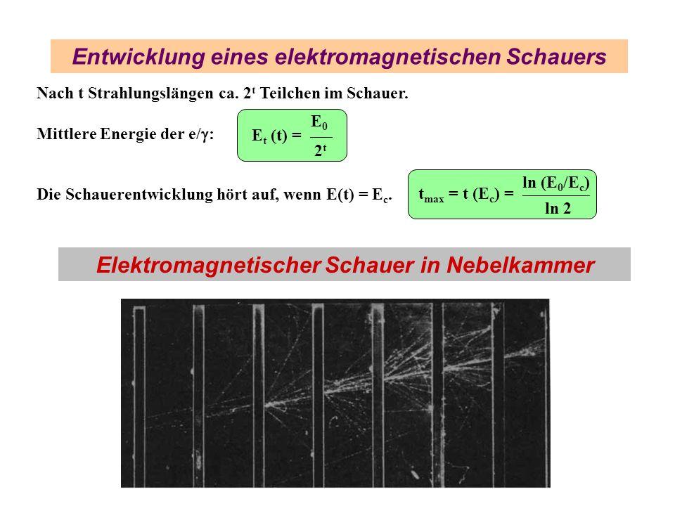 Entwicklung eines elektromagnetischen Schauers Nach t Strahlungslängen ca. 2 t Teilchen im Schauer. Mittlere Energie der e/ : Die Schauerentwicklung h