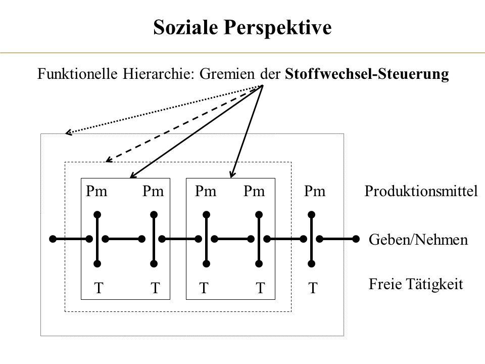 Soziale Perspektive ProduktionsmittelPm TTTTT Freie Tätigkeit Funktionelle Hierarchie: Gremien der Stoffwechsel-Steuerung Geben/Nehmen