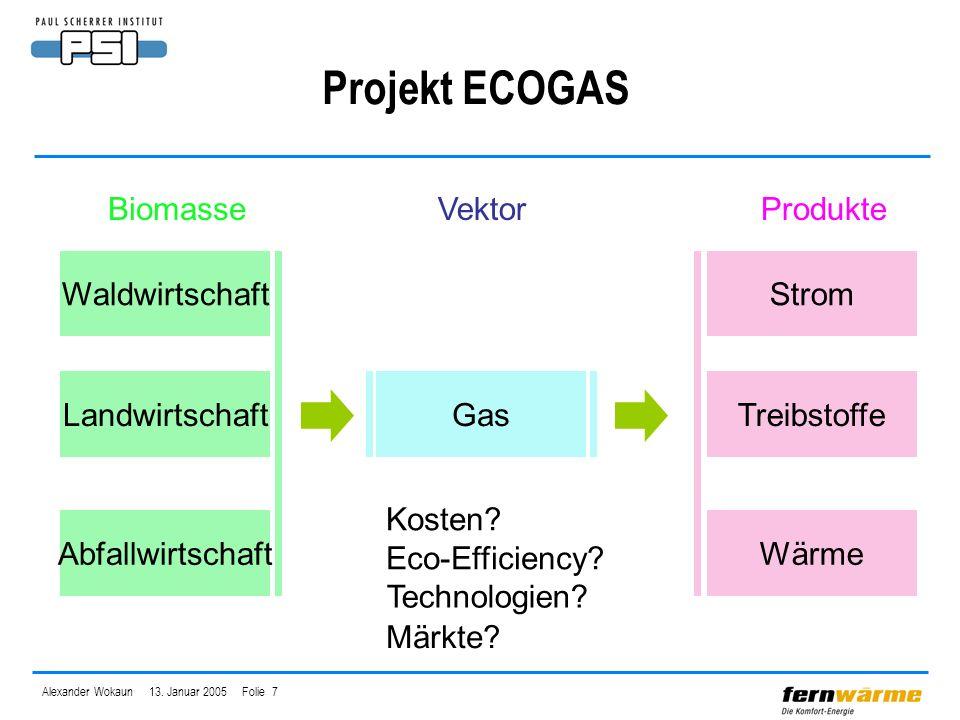 Alexander Wokaun 13. Januar 2005 Folie 7 Projekt ECOGAS Waldwirtschaft Landwirtschaft Abfallwirtschaft Gas Strom Treibstoffe Wärme BiomasseVektorProdu