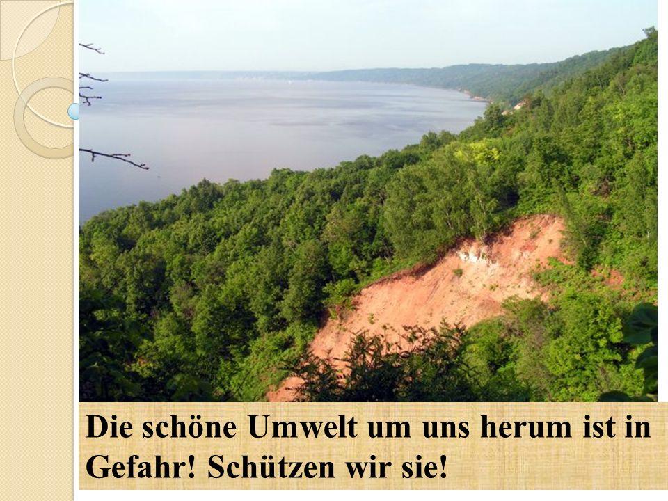 Die schöne Umwelt um uns herum ist in Gefahr! Schützen wir sie!