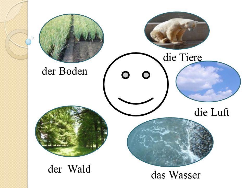 der Boden der Wald die Tiere die Luft das Wasser