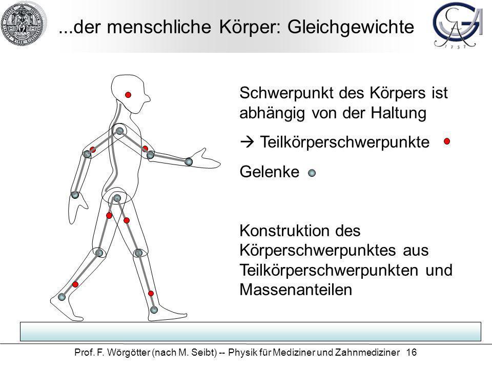 Prof. F. Wörgötter (nach M. Seibt) -- Physik für Mediziner und Zahnmediziner 16...der menschliche Körper: Gleichgewichte Schwerpunkt des Körpers ist a