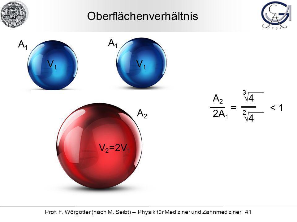 Prof. F. Wörgötter (nach M. Seibt) -- Physik für Mediziner und Zahnmediziner 41 Oberflächenverhältnis V1V1 V1V1 V 2 =2V 1 A1A1 A1A1 A2A2 A2A2 2A 1 = 4