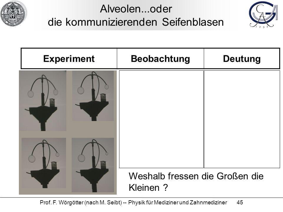Prof. F. Wörgötter (nach M. Seibt) -- Physik für Mediziner und Zahnmediziner 45 Alveolen...oder die kommunizierenden Seifenblasen ExperimentBeobachtun