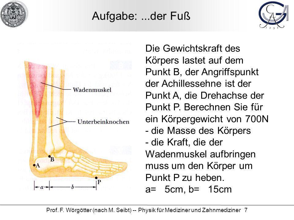 Prof. F. Wörgötter (nach M. Seibt) -- Physik für Mediziner und Zahnmediziner 7 Aufgabe:...der Fuß Die Gewichtskraft des Körpers lastet auf dem Punkt B