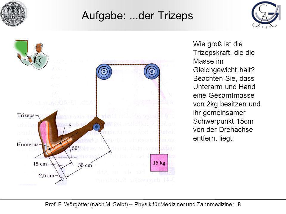 Prof. F. Wörgötter (nach M. Seibt) -- Physik für Mediziner und Zahnmediziner 8 Aufgabe:...der Trizeps Wie groß ist die Trizepskraft, die die Masse im