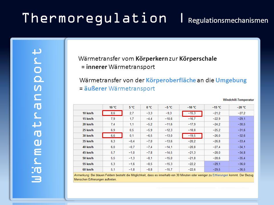 Thermoregulation | Regulationsmechanismen Wärmeatransport Wärmetransfer vom Körperkern zur Körperschale = innerer Wärmetransport Wärmetransfer von der