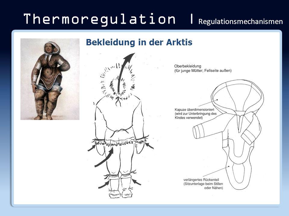 Thermoregulation | Regulationsmechanismen Bekleidung in der Arktis