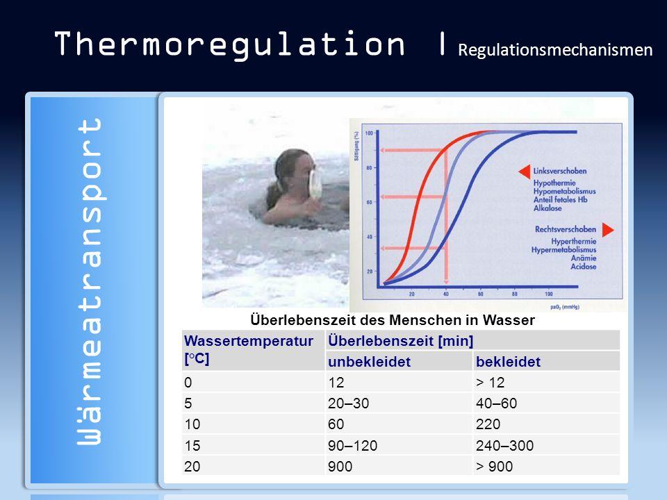 Thermoregulation | Regulationsmechanismen Wärmeatransport Überlebenszeit des Menschen in Wasser Wassertemperatur [°C] Überlebenszeit [min] unbekleidet