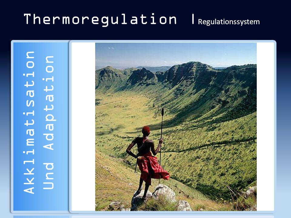 Thermoregulation | Regulationssystem Akklimatisation Und Adaptation