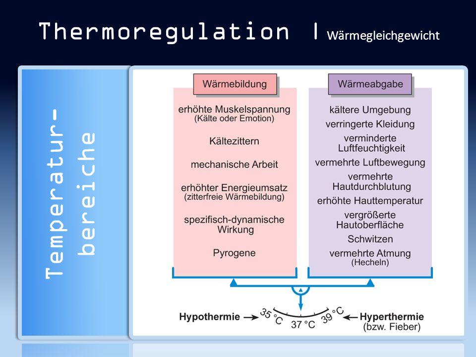 Thermoregulation | Wärmegleichgewicht Temperatur- bereiche