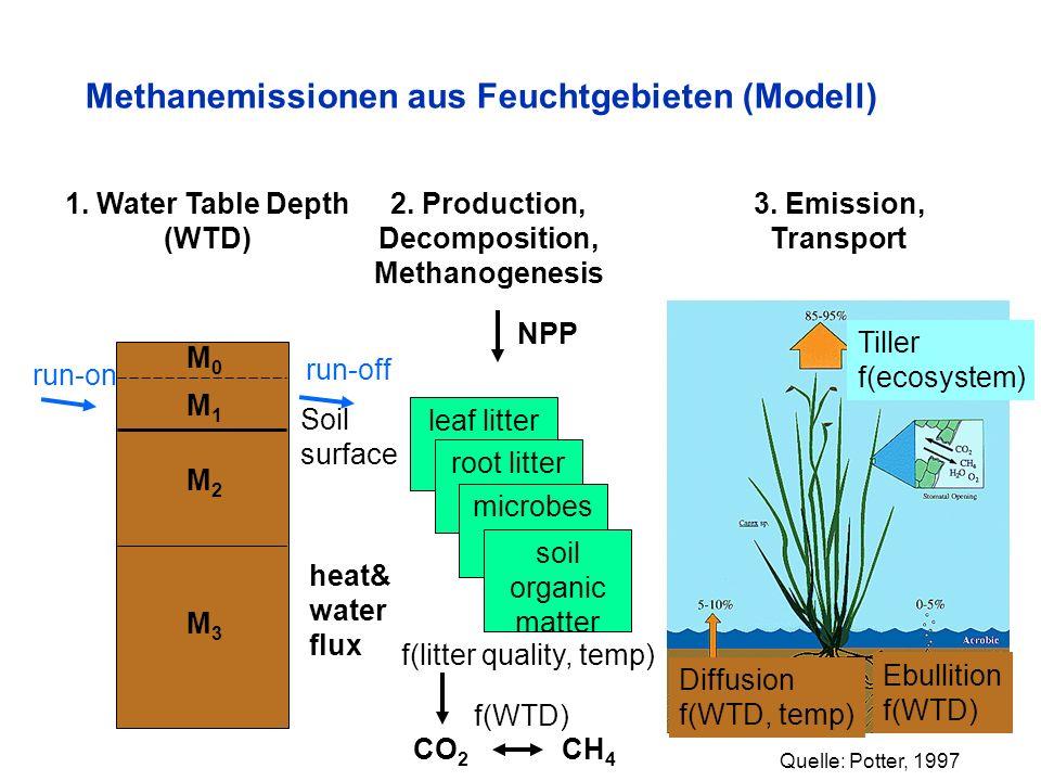Methanemissionen aus Feuchtgebieten (Modell) Diffusion f(WTD, temp) Ebullition f(WTD) Tiller f(ecosystem) Soil surface M0M0 M1M1 M2M2 M3M3 run-on run-
