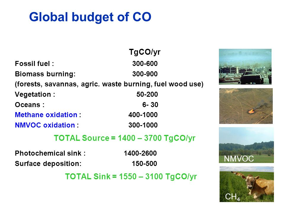 Global budget of CO Fossil fuel : 300-600 Biomass burning: 300-900 (forests, savannas, agric. waste burning, fuel wood use) Vegetation : 50-200 Oceans