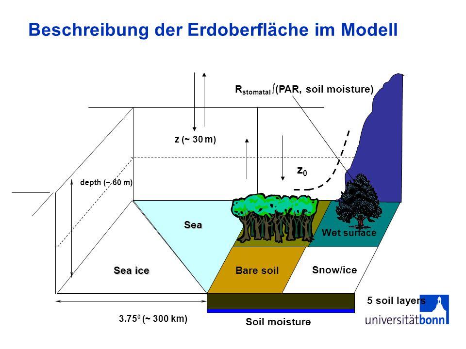 Beschreibung der Erdoberfläche im Modell 5 soil layers Sea ice Bare soil depth (~ 60 m) Sea Wet surface Snow/ice z (~ 30 m) 3.75 0 (~ 300 km) z0z0 Soi