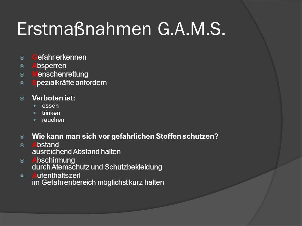 Erstmaßnahmen G.A.M.S.