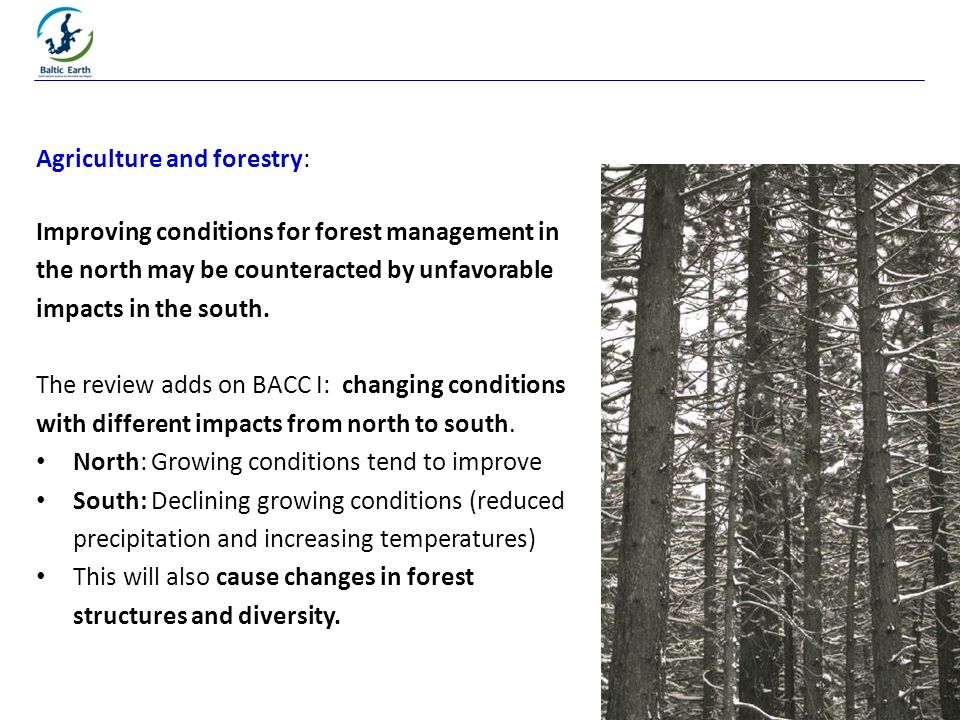30 Agriculture and forestry: Improving conditions for forest management in the north may be counteracted by unfavorable impacts in the south.