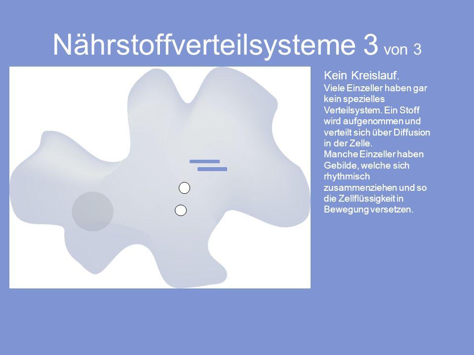 Nährstoffverteilsysteme 3 von 3 Kein Kreislauf. Viele Einzeller haben gar kein spezielles Verteilsystem. Ein Stoff wird aufgenommen und verteilt sich