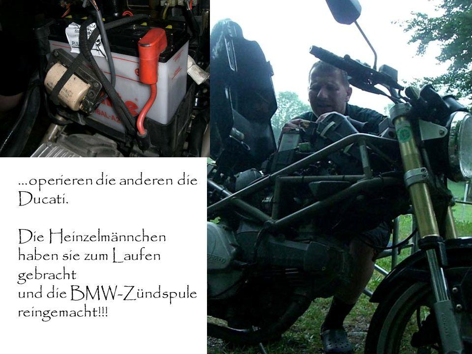 …operieren die anderen die Ducati. Die Heinzelmännchen haben sie zum Laufen gebracht und die BMW-Zündspule reingemacht!!!