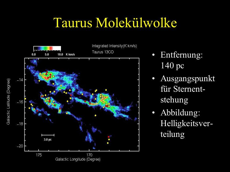 Taurus Molekülwolke Entfernung: 140 pc Ausgangspunkt für Sternent- stehung Abbildung: Helligkeitsver- teilung