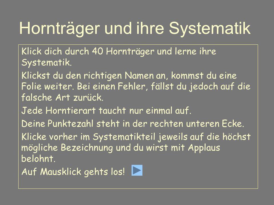 Hornträger und ihre Systematik Klick dich durch 40 Hornträger und lerne ihre Systematik.