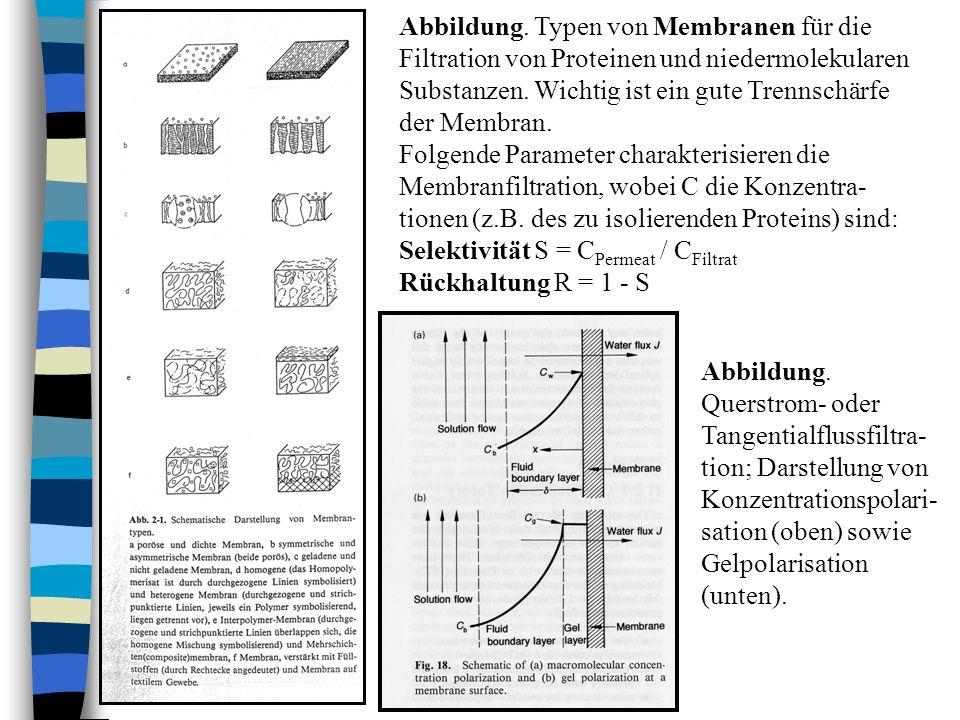 Abbildung. Typen von Membranen für die Filtration von Proteinen und niedermolekularen Substanzen. Wichtig ist ein gute Trennschärfe der Membran. Folge