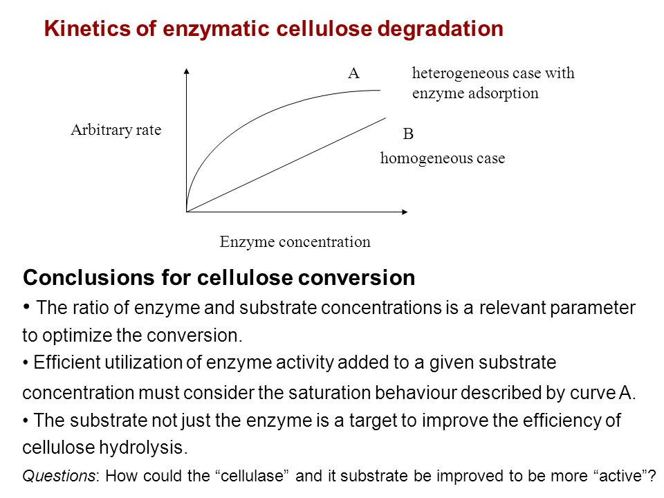 Kinetics of enzymatic cellulose degradation Enzyme concentration Arbitrary rate homogeneous case heterogeneous case with enzyme adsorption Conclusions