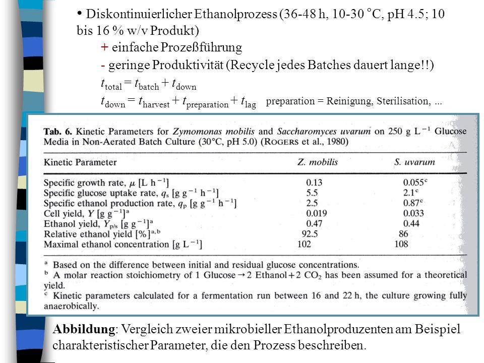 Diskontinuierlicher Ethanolprozess (36-48 h, 10-30 °C, pH 4.5; 10 bis 16 % w/v Produkt) + einfache Prozeßführung - geringe Produktivität (Recycle jede