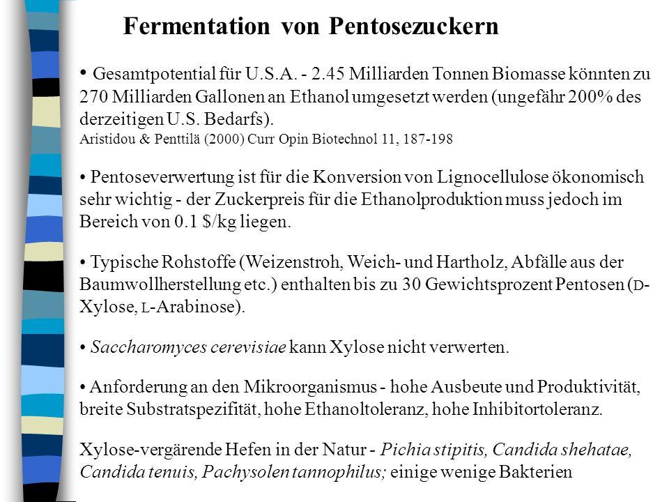 Fermentation von Pentosezuckern Gesamtpotential für U.S.A. - 2.45 Milliarden Tonnen Biomasse könnten zu 270 Milliarden Gallonen an Ethanol umgesetzt w