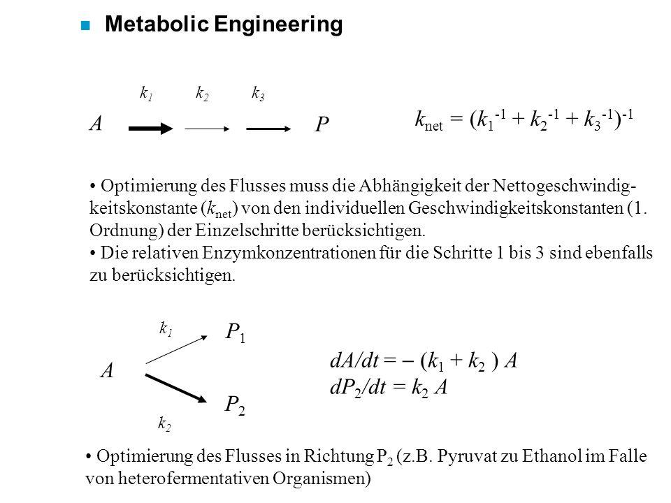 n Metabolic Engineering A P k1k1 k2k2 k3k3 k net = (k 1 -1 + k 2 -1 + k 3 -1 ) -1 Optimierung des Flusses muss die Abhängigkeit der Nettogeschwindig-