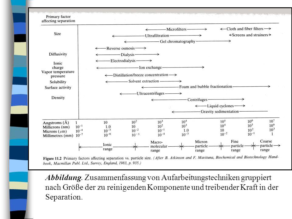 Prozessverbesserungen Abbildung: Theoretischer Vergleich von Chemostaten mit und ohne Verwendung von immobilisierten Zellen.