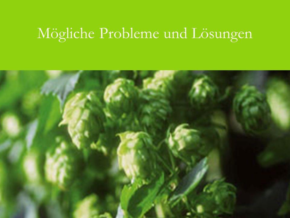 Mögliche Probleme und Lösungen