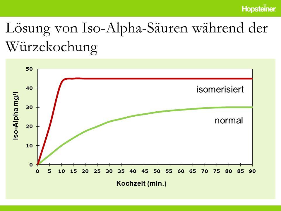 Lösung von Iso-Alpha-Säuren während der Würzekochung isomerisiert normal