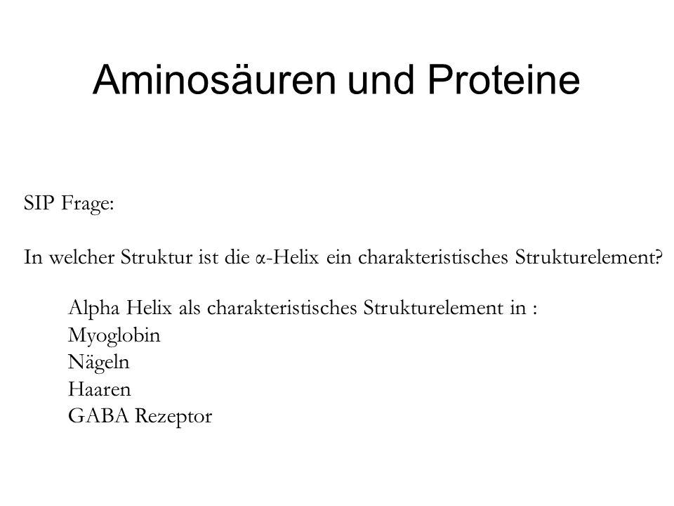 SIP Frage: In welcher Struktur ist die α-Helix ein charakteristisches Strukturelement? Aminosäuren und Proteine Alpha Helix als charakteristisches Str